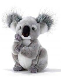 Peluche Koala 28 cm